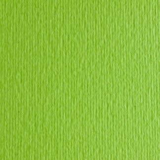 Картон цветной для пастели Elle Erre 10 verde pisello А4 (21х29,7 см) 220 г/м.кв. Fabriano Италия
