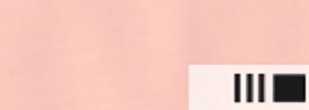Акриловая краска 36 Телесный темный 100 мл Renesans Польша