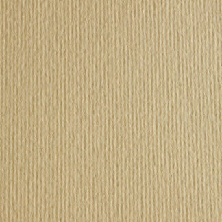 Картон цветной для пастели Elle Erre 01 panna 50х70 см 220 г/м.кв. Fabriano Италия
