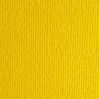 Картон цветной для пастели Elle Erre 07 giallo 50х70 см 220 г/м.кв. Fabriano Италия