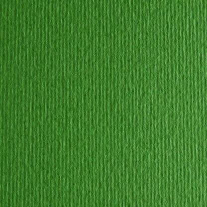Картон цветной для пастели Elle Erre 11 verde 50х70 см 220 г/м.кв. Fabriano Италия