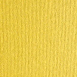 Картон цветной для пастели Elle Erre 25 cedro 50х70 см 220 г/м.кв. Fabriano Италия