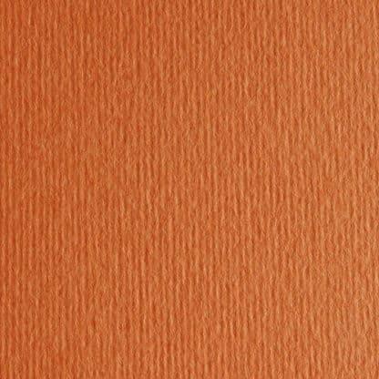 Картон цветной для пастели Elle Erre 26 aragosta 50х70 см 220 г/м.кв. Fabriano Италия