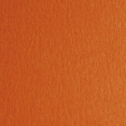 Картон дизайнерский Colore 46 aragosta 70х100 см 200 г/м.кв. Fabriano Италия