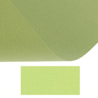 Бумага цветная для пастели Tiziano 11 verduzzo А4 (21х29,7 см) 160 г/м.кв. Fabriano Италия