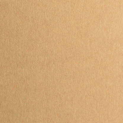 Картон дизайнерский Colore 49 bruno 50х70 см 200 г/м.кв. Fabriano Италия