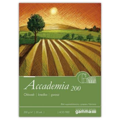 А2001622К20  Склейка для рисования Gamma Accademia 16х22,5см 20лист 200гр/м2, проклейка