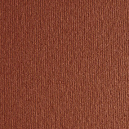 Картон цветной для пастели Elle Erre 19 terra bruciata 70х100 см 220 г/м.кв. Fabriano Италия