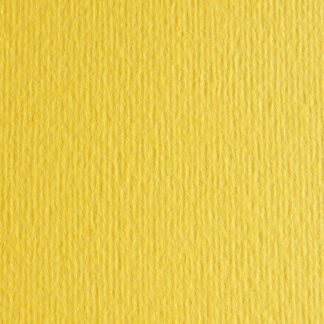 Картон цветной для пастели Elle Erre 25 cedro 70х100 см 220 г/м.кв. Fabriano Италия